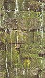 rasch Tapete 861303 aus der Kollektion b.b home passion VI – Vliestapete im Natur-Design mit...