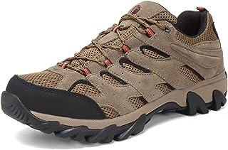 Hiking Shoes Lowa
