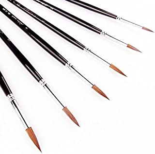Acrylic Paint Brush Set, 6pcs Sable Hair Brushes for All Purpose Oil Watercolor Face Painting Artist Professional Kits.