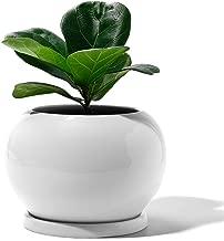 Best medium ceramic flower pots Reviews