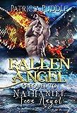 Fallen Angel: Angels and Demons Romance (Ominous)