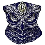 Electrik Unicorn Infinity Face, Mask Bandana for Festivals, Raves, Dust - One Size (Dis Owl is Lit AF)