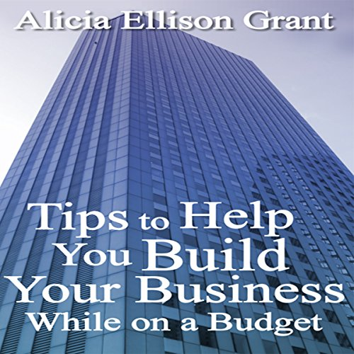 Tips to Help You Build Your Business While on a Budget audiobook cover art