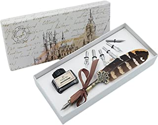 Feather Quill Pen Set Dip pen with ink and 6pcs Stainless Steel Nibs Calligraphy Pen in Gift Box HO-Q-300
