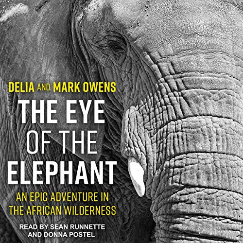 The Eye of the Elephant audiobook cover art