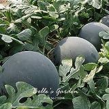 10pcs gigante Ronda Negro sandía Semillas de frutas de semilla de melón dulce Agua 25 libras jardín de DIY DIY Bonsai semillas de plantas