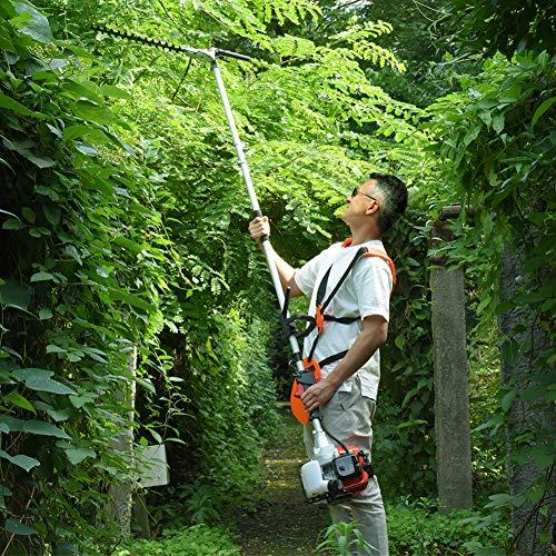 MAXTRA 42.7cc Gas Pole Tree Trimming Combo Set