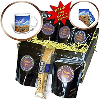 3dRose Boehm Photography Landscape - Garden of the Gods in Colorado Springs looking East - Coffee Gift Basket (cgb_239369_1)