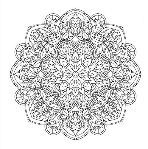 『flower mandalas 心を整える、花々のマンダラぬりえ』のトップ画像