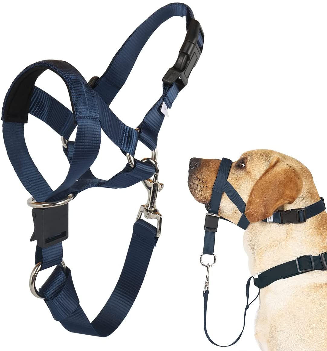 Ranking TOP15 Barkless Dog Head Collar No Adjustab Pull Dogs for Halter In a popularity