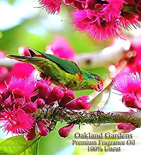 ISLAND NECTAR Fragrance Oil - 100% UNCUT - Sophisticated blend of night blooming Jasmine, Exotic Passionflower, Citrus and Florals - BULK Fragrance Oil By Oakland Gardens (060 mL - 2.0 fl oz Bottle)
