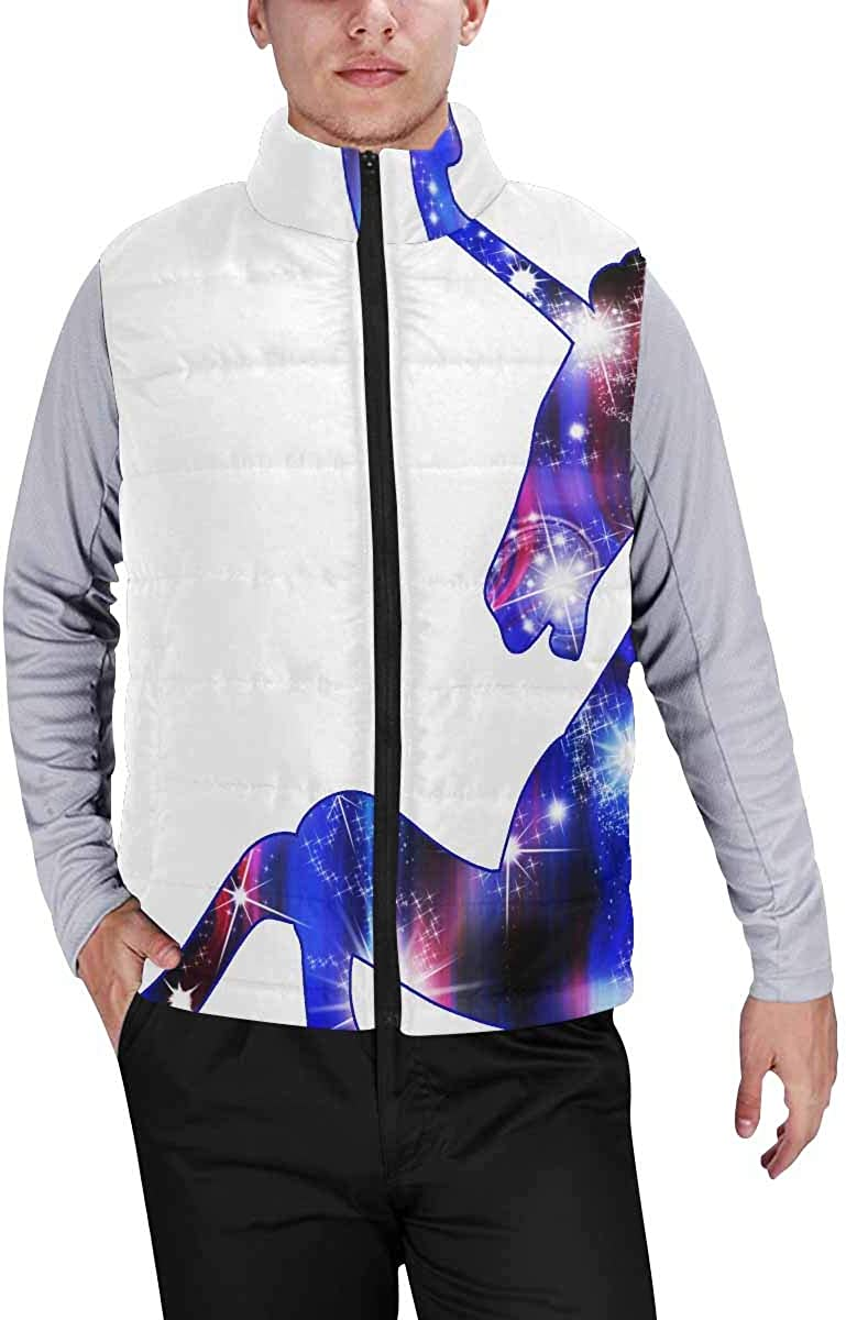 InterestPrint Men's Lightweight Outwear Vest for Hiking, Fishing Unicorn with Rainbow and Shine XS