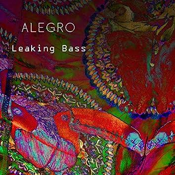 Leaking Bass (Radio edit)