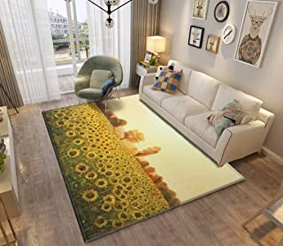 Area Rug and Carpet for Home Living Room, An oil painting on canvas of a rural sunset landscape with a golden Large Anti S...