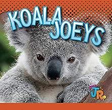 Koala Joeys (Baby Animals)