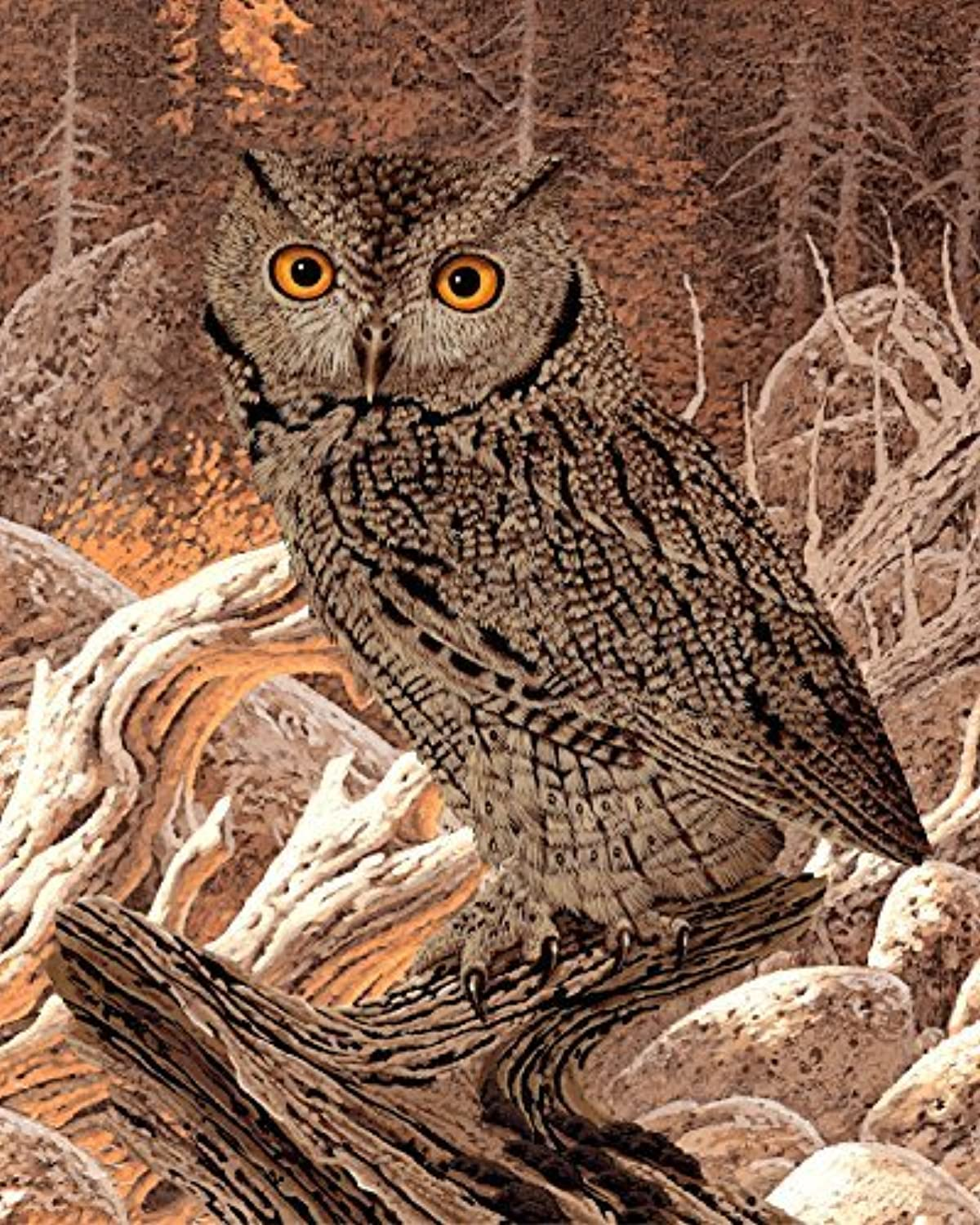 Screech Owl 504 Piece Jigsaw Puzzle 16 X 20 by CVPuzzles