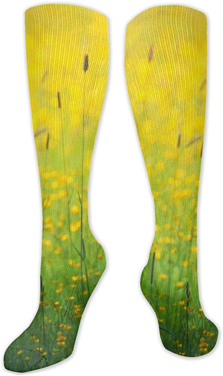 Spring Beautiful Yellow Wildflower Sun Knee High Socks Leg Warmer Dresses Long Boot Stockings For Womens Cosplay Daily Wear