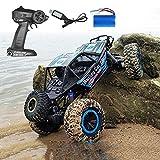 MUMUMI 4WD 2.4G Todoterreno Camión RC, 1/10 de Big Monster Neumático RC Buggy, Impermeable y de Carga USB RC Coche con Luces, 20 kmh RC Vehículo for Adultos y niños amortiguadora de Golpes