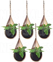 Pack of 5 Bamboo Pot Hanging Planter Orchid Vanda Flower Woven Basket Garden Decor Home