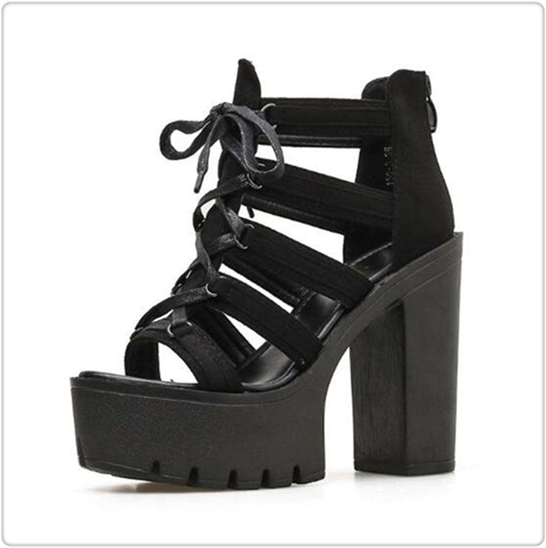 HCHBE& Heel Pumps Summer Sandal Thick Heels Sandals Women Platform Casual shoes