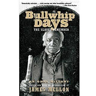 Bullwhip Days audiobook cover art