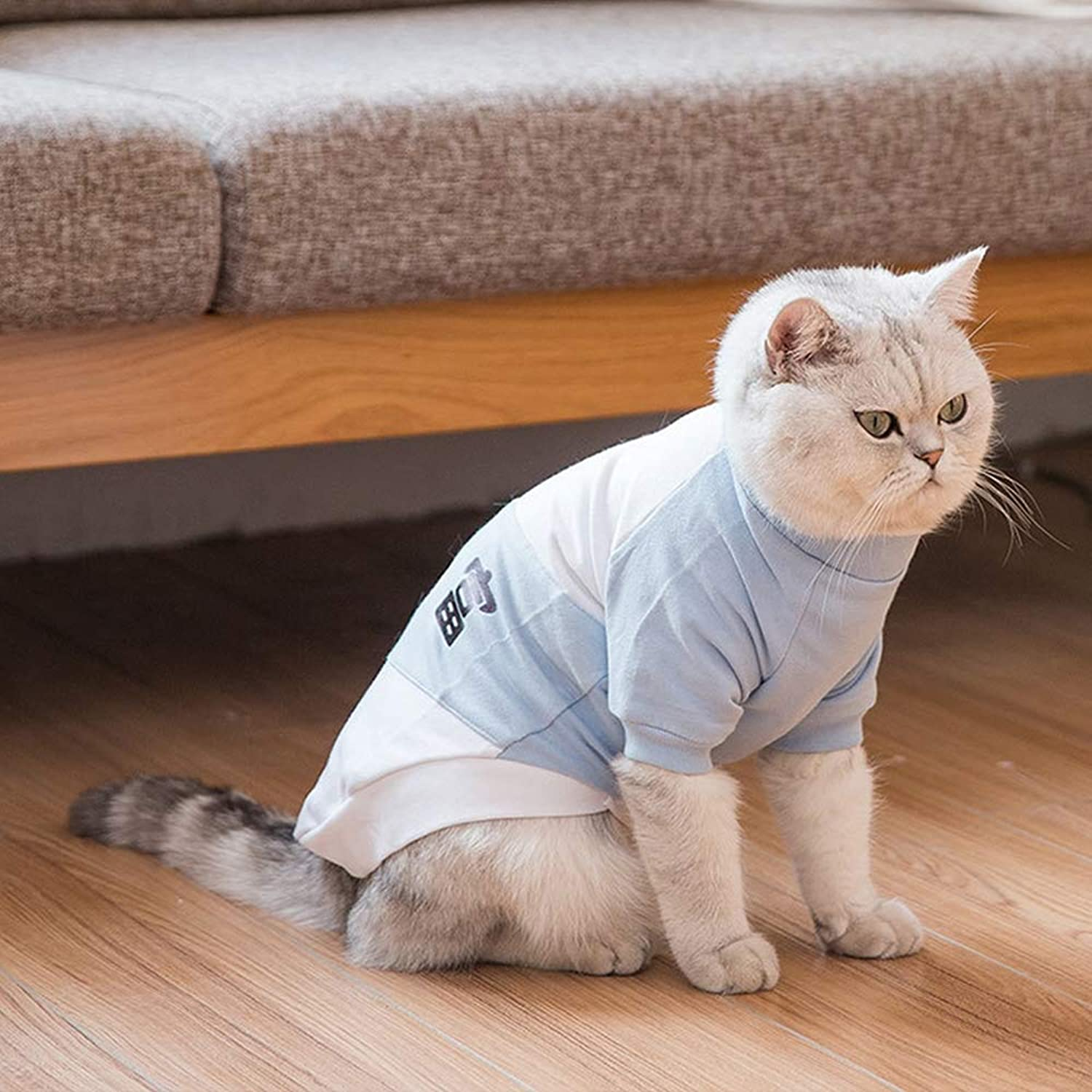 Cats Coat Clothes, for Pet Puppy Tee Shirts Dogs Costumes Cat Tank Top Vest Dog Shirts Pet Shirts Dogs TShirt Puppy Dogs,bluee,S