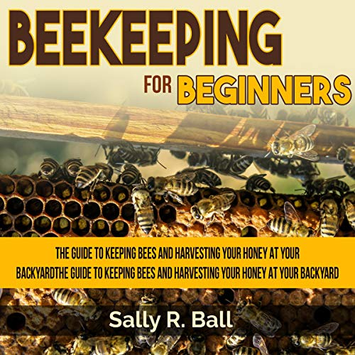 Beekeeping for Beginners Audiobook By Sally R. Ball cover art