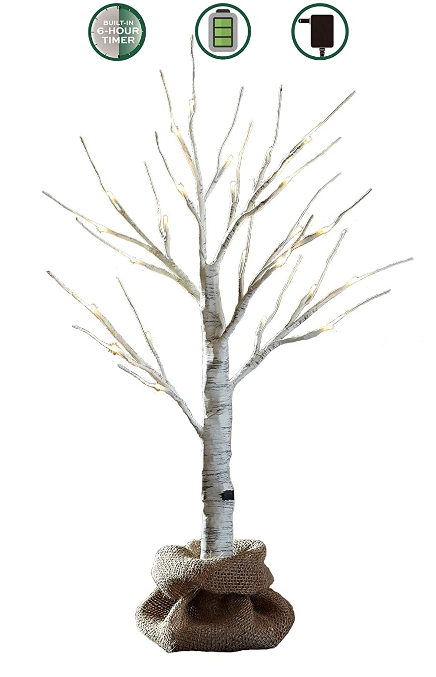 LOFTPLUS LED Birch Tree Hand-Painted Bonsai String Light 24 LED for Indoor Use Warm White Battery-Operated AC Adapter Burlap Sack Included - 24inch Tall