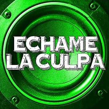 Echame La Culpa (Instrumental)