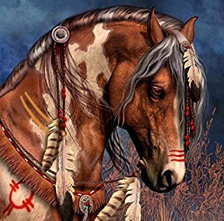 DIY Diamond Painting Cross Stitch Animal Brown Horse Feather Rubik 5D Pictures of Crystal Embroidery Mosaic Kits 30x30cm(12x12