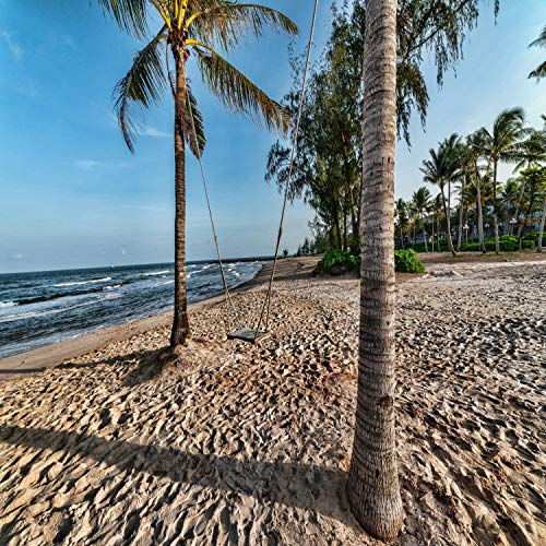 Zen by the Beach | Sand, Vitamin, Serotonin, Mindfulness, Wellness