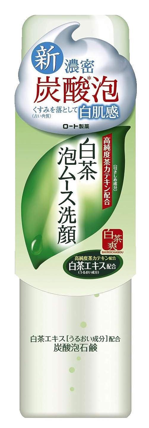 メタンミント集団ロート製薬 白茶爽 白茶泡ムース濃密炭酸泡洗顔 高純度茶カテキン配合 150g