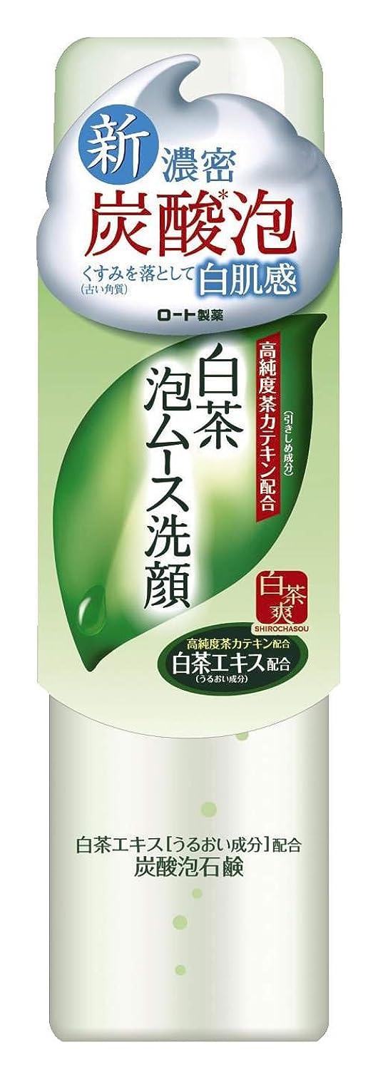 フォージ疎外哺乳類ロート製薬 白茶爽 白茶泡ムース濃密炭酸泡洗顔 高純度茶カテキン配合 150g