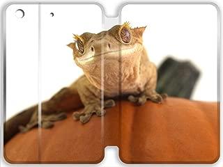 gecko ipad cover