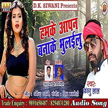 Hamke Aapan Banake Bhulayilu