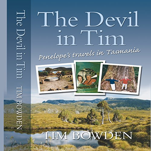 The Devil in Tim audiobook cover art