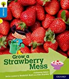 Oxford Reading Tree Explore with Biff, Chip and Kipper: Oxford Level 3: Grow a Strawberry Mess