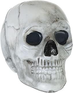 Best plastic skulls for sale Reviews