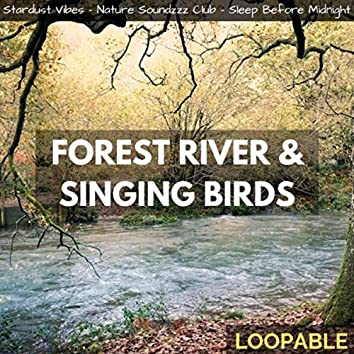 Forest River & Singing Birds (Loopable)