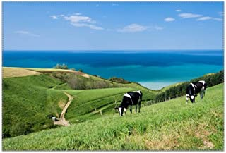 Cow On The Edge of The Ocean Table Mats,Placemat Non-Slip Washable Place Mats,Heat Resistant Kitchen Tablemats for Dining Table