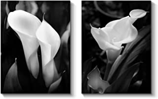 Calla Lily Canvas Wall Art: White Flower Artwork Painting Print on Wrapped Canvas for Living Room (16'' x 12'' x 2 Panels)