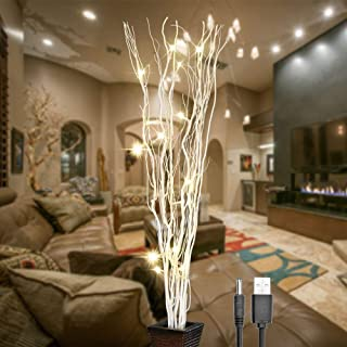 LIGHTSHARE 36Inch 16LED Natural Willow Twig Lighted Branch for Home Decoration, USB Plug-in and Battery Powered