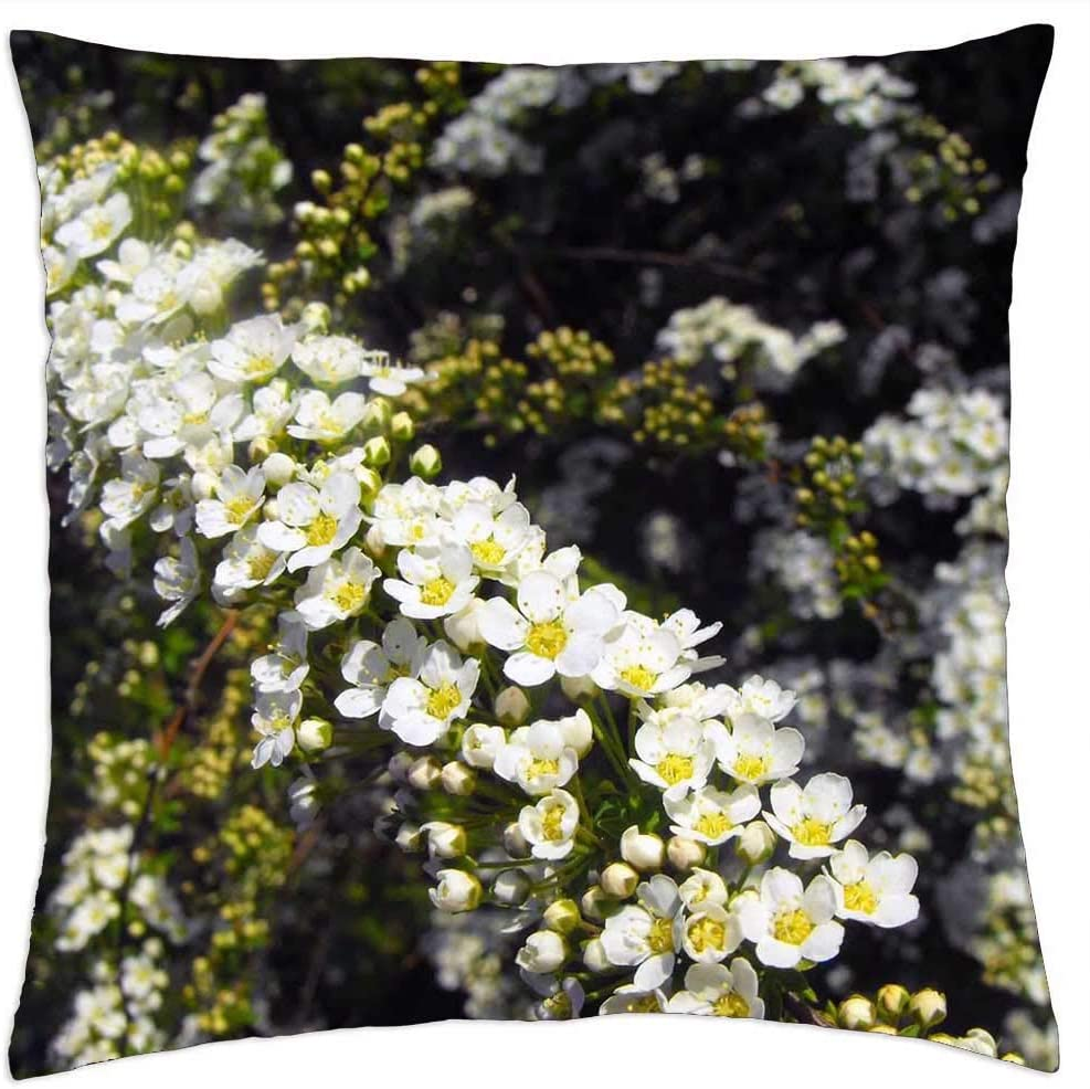 LESGAULEST Throw Pillow Cover 16x16 - Shrub Max 57% OFF Flowers inch White Max 86% OFF