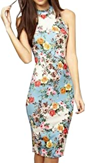 Sheng Xi Women s Sleeveless Print Stretch Elegant Sexy Slim Sun Dress abb480d36