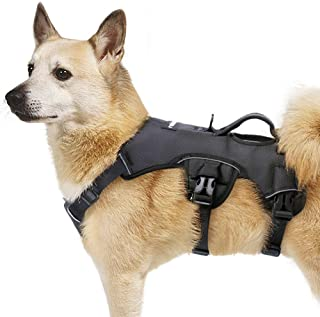 Rabbitgoo Large Dog Harness with Handle for Lifting, Adjustable Pet Vest for Medium Large Dogs, Escape Proof Dog Training Harness with Metal Leash Clip, Comfort Dog Body Harness for Walking Hiking