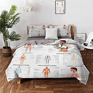 Human Anatomy Cover Set Complete Chart of Different Organ Body Structures Cell Life Medical Illustration 3 Piece (1 Duvet Cover + 2 Pillow Shams) Warm Comforter Cover with Zipper Closure - Twin