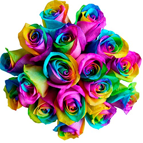 Fresh Rainbow Roses Bouquet by Flower Explosion - 12 Stems