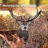 Heimische Wildtiere 2020, Wandkalender / Broschürenkalender im Hochformat (aufgeklappt 30x60 cm) - Kalender mit Monatskalendarium zum Eintragen