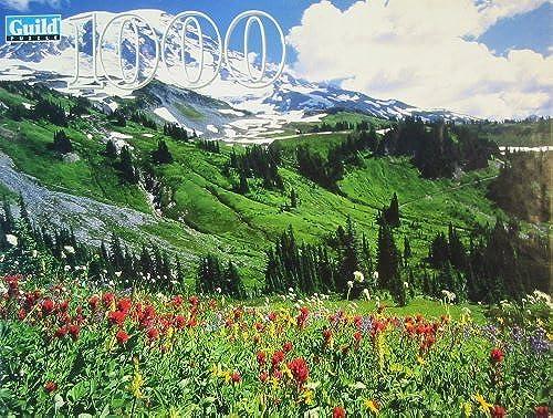 bienvenido a elegir Mt. Rainier National Park, Washington 1000 1000 1000 Piece Puzzle by Guild Puzzle  mas barato