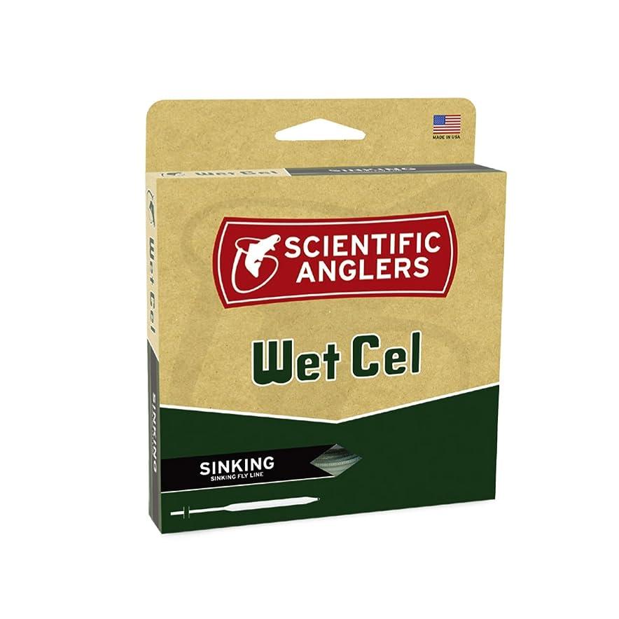 本気ユーザー王子Scientific Anglers WetcelタイプVI General Purpose Sinking Lines